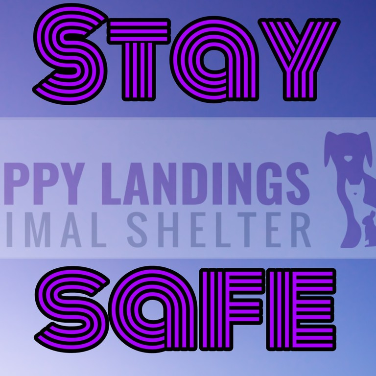 stay_safe_pic